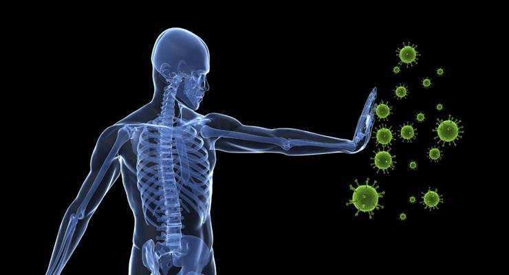Alimentos para tu sistema inmunológico